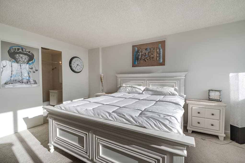 Master Bedroom with ultra plus King Sized Mattress!