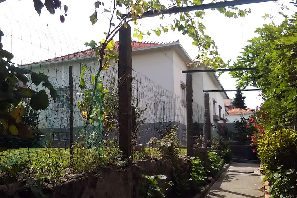 House from the Garden