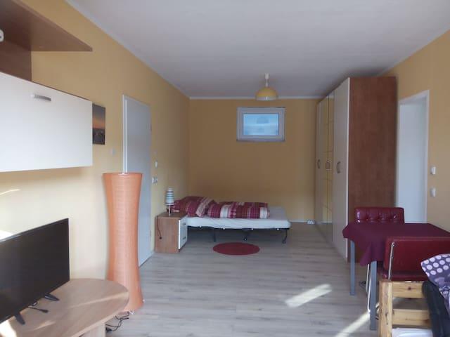 Wohnung in ruhiger Lage in der Nähe von Heidelberg - Wiesenbach - Apartemen
