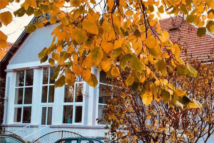 Villa Anzabel Balatonfüred, Csokonai utca 3.