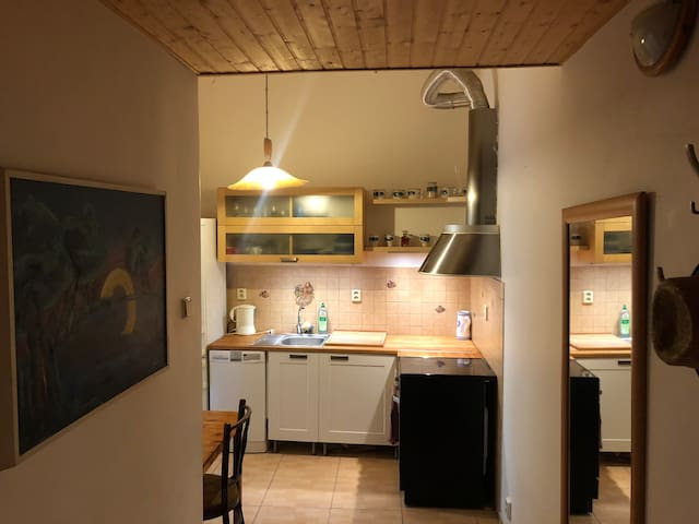Cozy apartment in centre for two plus one