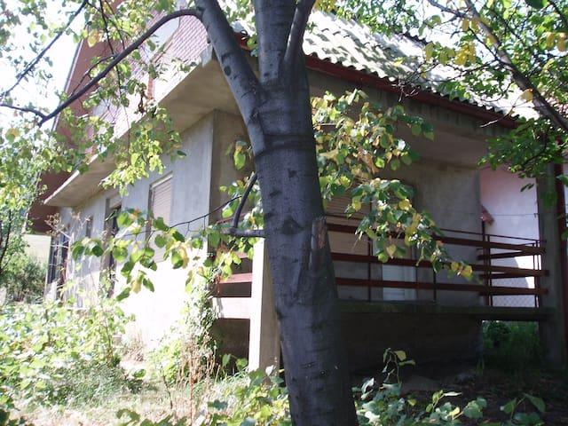 Dugorocni zakup na Borskom Jezeru