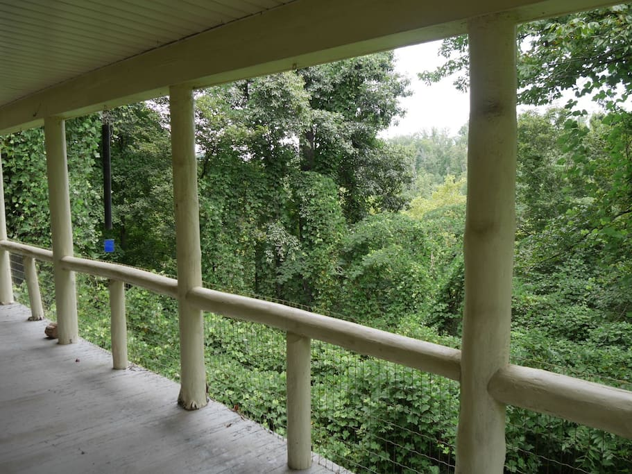 Our front porch overlooks the woods leading down to Flat Creek.