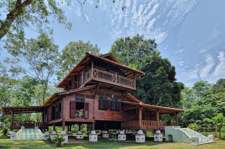 Villa Serenity • Banting Malaysia - Banting