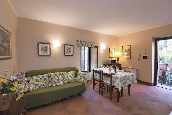 Castellare in Chianti, Basilico