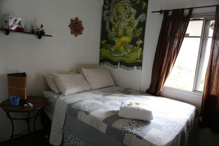 Comfy apartment / good neighborhood near the park - São Paulo - Leilighet