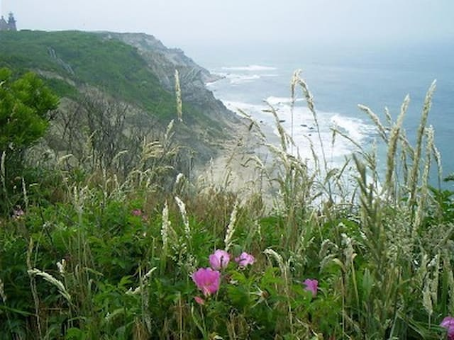 Sweeping views to Atlantic - New Shoreham - Rumah