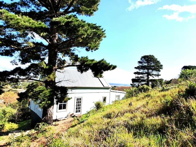Noordhoek Beach Cottage - Oceans view among trees!