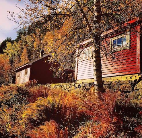 Klassisk norsk hytte nær Trolltunga og Hardanger