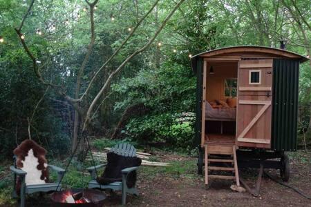 Woodland shepherd's hut with hot tub