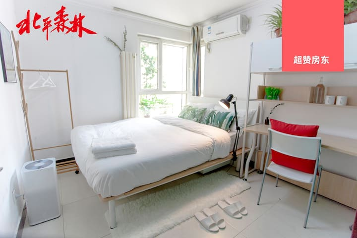 【Ping】Clean Airy Plants Studio - Forest in Beijing