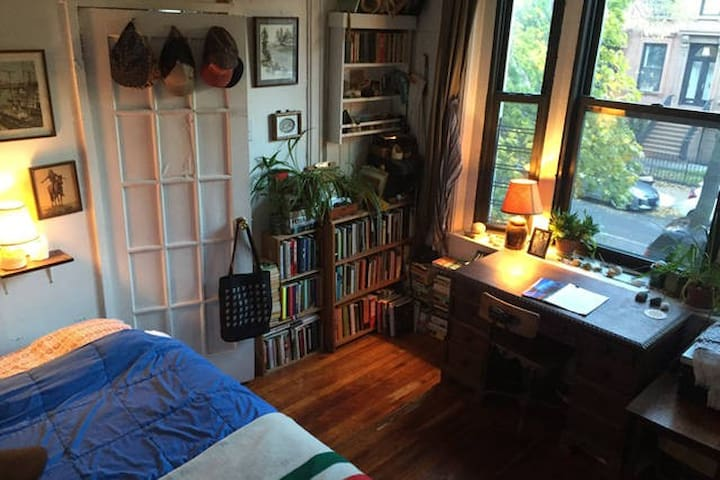 Sunny, Book-Filled Room in Carroll Gardens