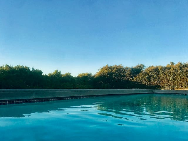 heated pool for early morning swims