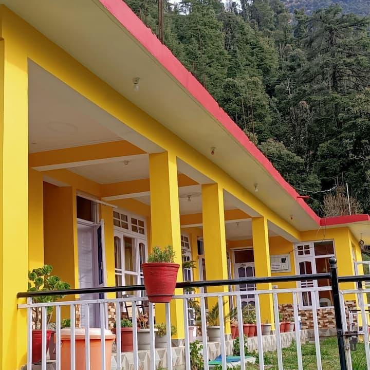 Yellow House Dharamkot