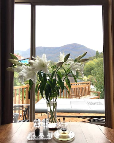 View of Mt Wellington from Dining Area