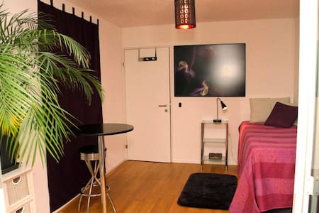 Charming room in modern apartment, close to Zurich - Dietlikon - Lejlighed