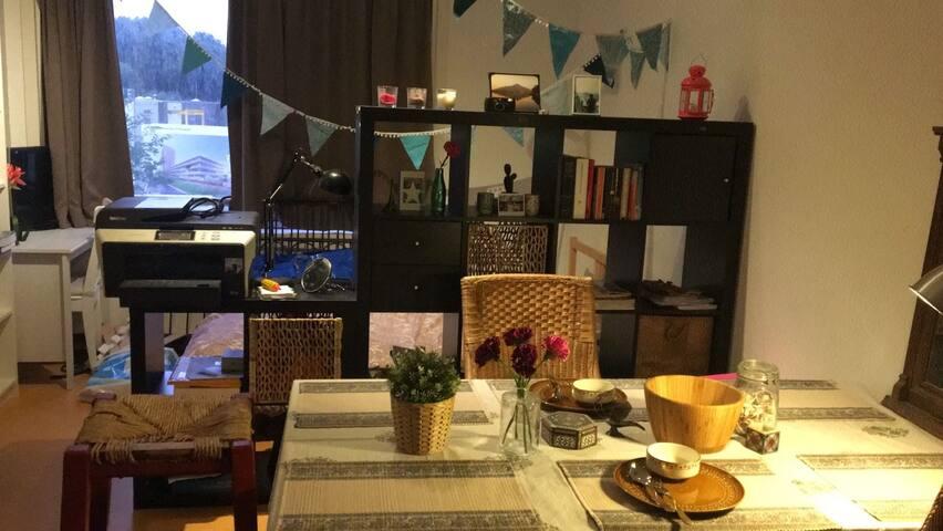 Cosy Studio in Amsterdam
