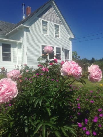Harmony Cottage Lubec Maine - Lubec - House