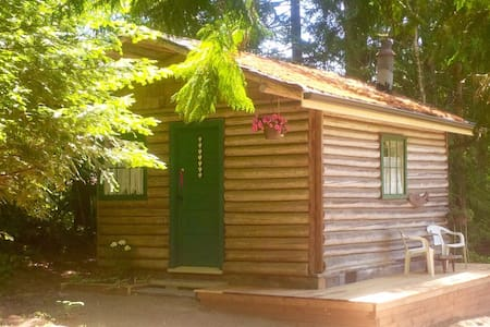 Newly renovated rustic log cabin - Errington - กระท่อม