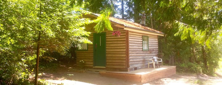 Newly renovated rustic log cabin