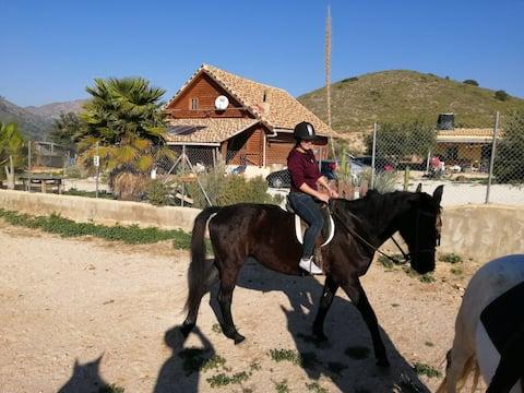 Habitaciones en rancho de Caballos, horseriding