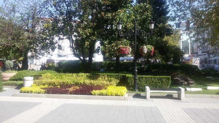 Central house - Plovdiv - Casa