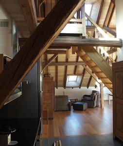 Grange rénovée loft - Le Monêtier-les-Bains