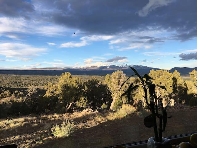 Mountain Berry Ridge Mancos Co, Mesa Verde Park