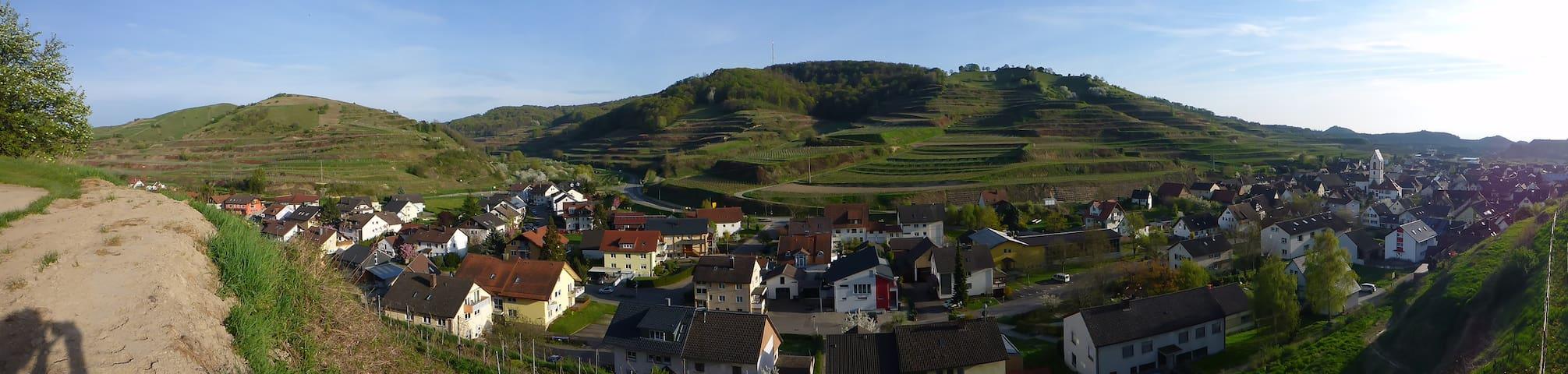 Ferienwohnung Winzerhof von Weinbergen umgeben 2