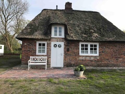 Gemütliches Reetdachhaus mit großem Garten