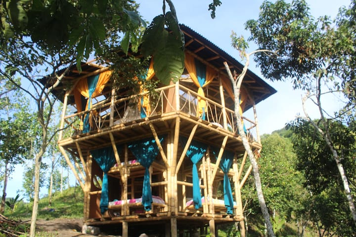 Entire Six-Bed Dorm in the Bamboo Pentagon House