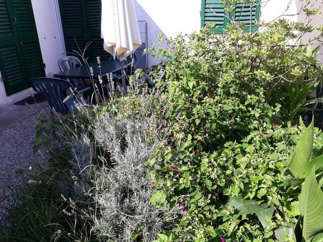 Appartamento con giardino 4