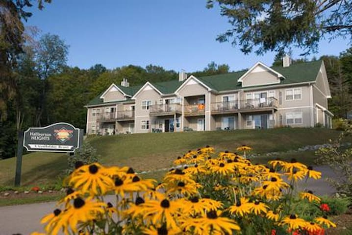 Weekly Holiday Retreat,  Haliburton Highlands