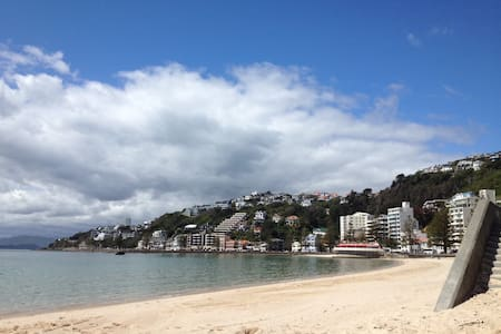 Modern, apartment with balcony & sea view. Great location in Oriental Bay. Two minutes walk down to the beach and Freyburg Swimming Pool. Walk to town, restaurants, theatre, Te Papa. Bus stop down the road across from the beach. 24 hours security.