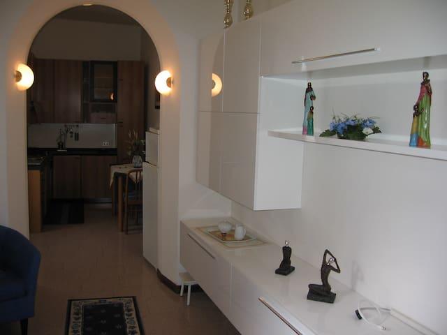 Bilocale bilivello in Carvaggio centro