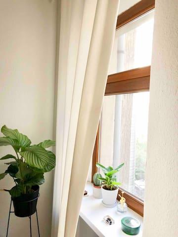 Minimalist single apartment in Berlin, short term