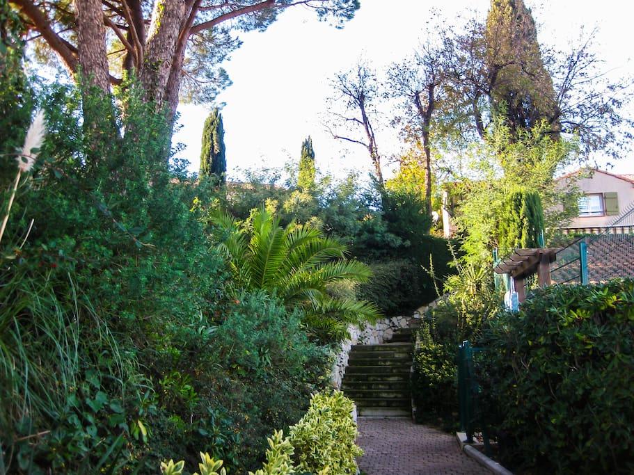 Green walk of our residential Promenade verte de notre habitation. Unsere Grüne Private Promenade. El verde paseo de nuestra urbanización privada.