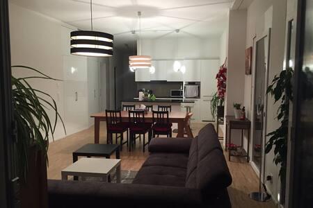 Appartement neuf de standing suppérieur - Fribourg