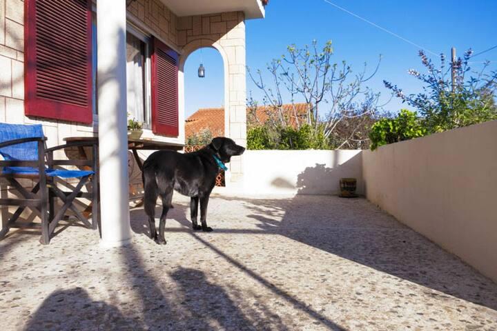 Summer House, South Attica, Greece - Agia Marina - Casa