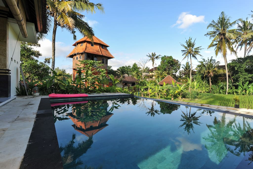 Peaceful and quiet Private pool overlooking to the paddy view and coconut tree