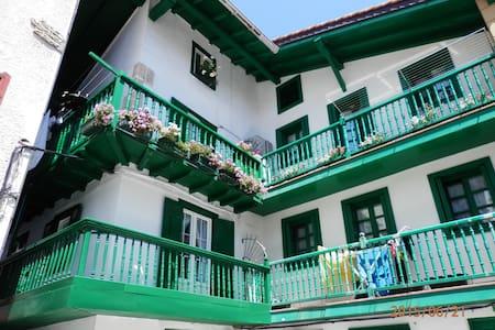 Apartamento reformado centrico (REGISTRO ESS00299) - Hondarribia - Appartement