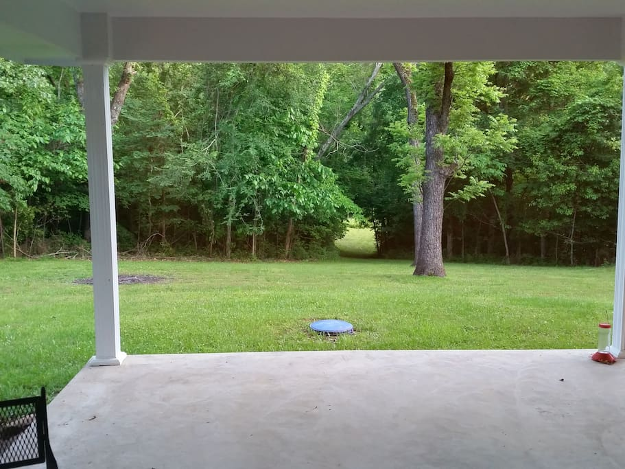 view of back yard from living room.