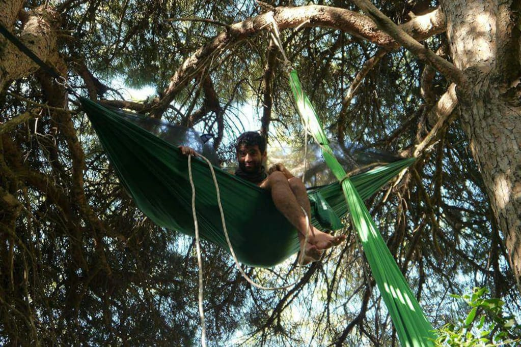 Adventure nights in hammocks!!! - Cabanes dans les arbres ...