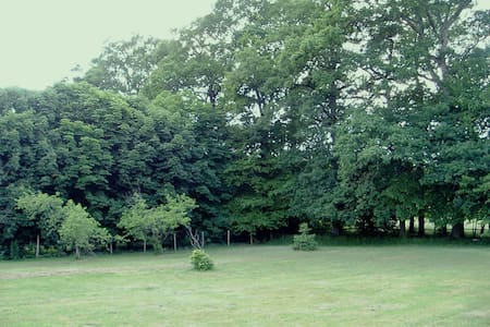 This large House has a large living room with a fireplace. The Park has oak trees, sometimes, deer, squirrels and wild boars can walk there. Lots of charm and tranquility has 15 minutes from the city and 5 minutes from the shops.