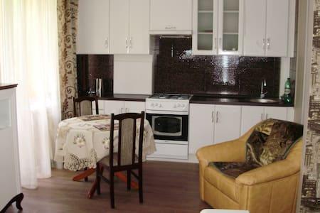 отдых на балтийском побережье - Pionerskiy - Apartment