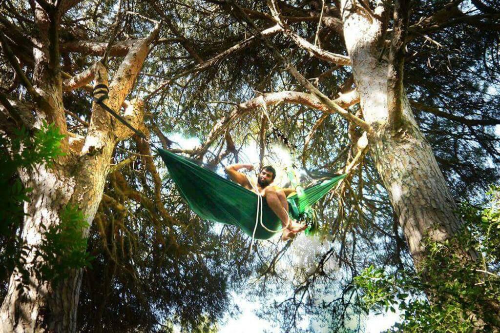 Adventure nights in hammocks!!! - Cabanes dans les arbres ...