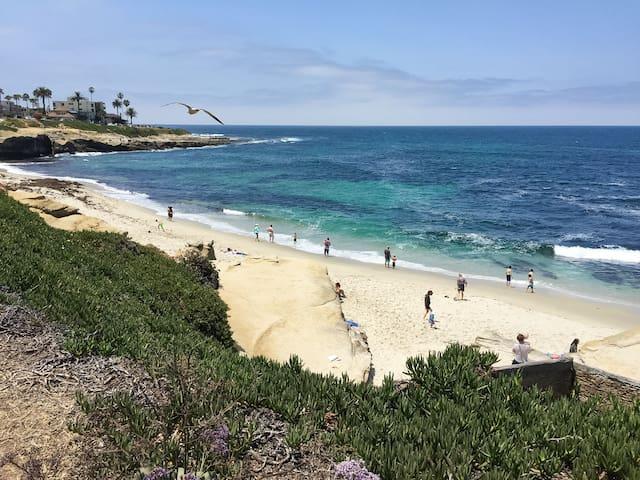 Enjoy beautiful La Jolla! (5 min. walk to this beach)