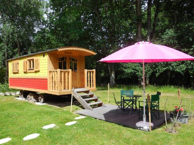 Roulotte / Gipsy caravan - Saint Benoît la Forêt - Andre