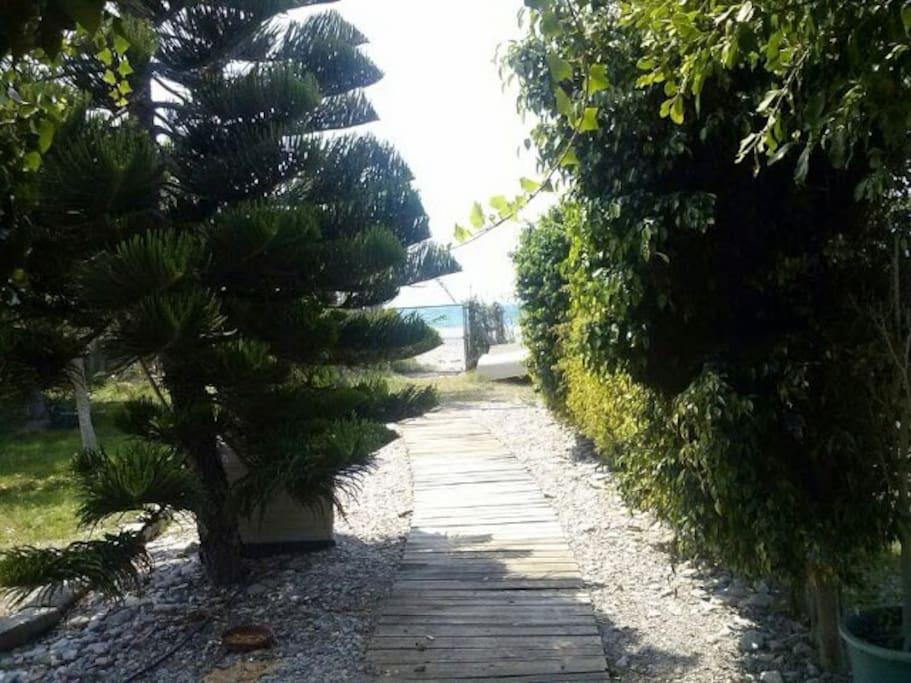 Caba a a pie de playa cabanes louer adra andalousie - Bruit de la pie ...