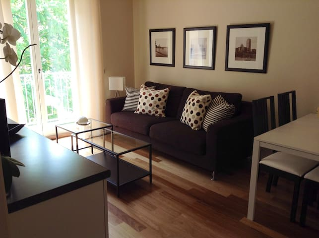 Brand new 1 bedroom apt downtown